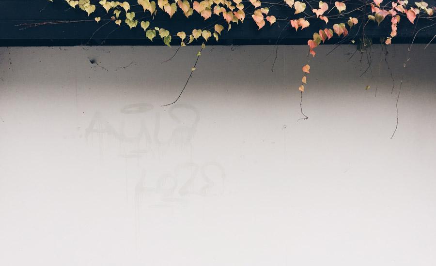 Park - 25/11/2014